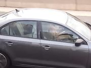 Delaware Chick Driving Playing with Herself
